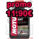 oil motul grand prix go kart