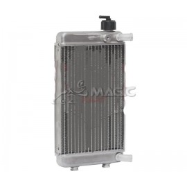 RADIATOR WITH CAP ASSY. DD2 up to 2011