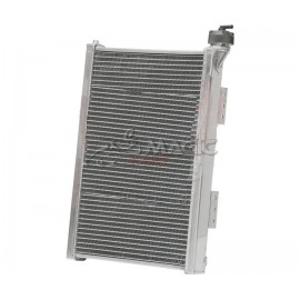 ALUMINIUM RADIATOR RV002 300mm WITH CAP