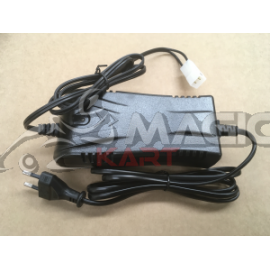 Battery charger for DALMI trolley